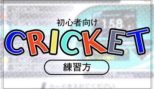 【ダーツ初心者向け】CRICKET(クリケット)の練習をしよう!【CRICKET COUNT-UP】