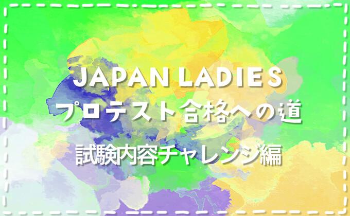 【ダーツプロ挑戦】JAPAN LADIESプロテスト合格への道【試験内容チャレンジ編その2】